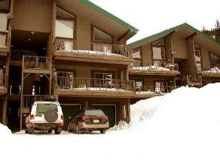Taos Ski Valley New Mexico Vacation Rentals - Apartment