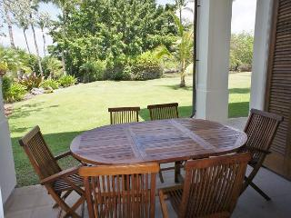 Kamuela Hawaii Vacation Rentals - Apartment