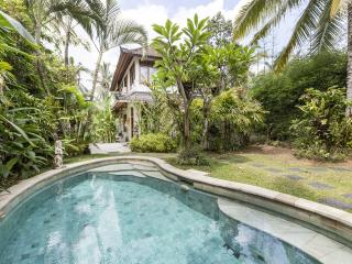 Ubud Indonesia Vacation Rentals - Villa