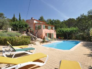 Lorgues France Vacation Rentals - Villa