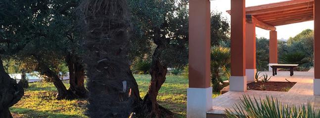 Castelvetrano Italy Vacation Rentals - Home