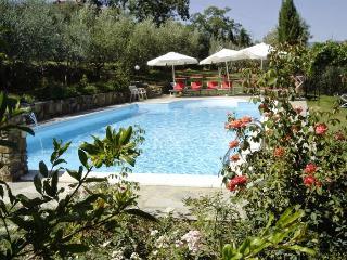 Pergine Valdarno Italy Vacation Rentals - Villa