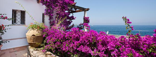 Caianello Italy Vacation Rentals - Villa