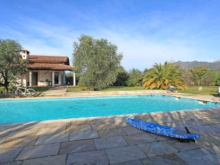 Querceta Italy Vacation Rentals - Villa