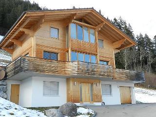 Zweisimmen Switzerland Vacation Rentals - Apartment