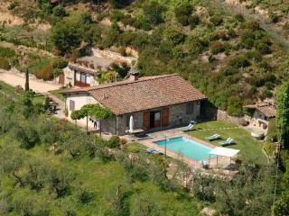 Capannori Italy Vacation Rentals - Villa
