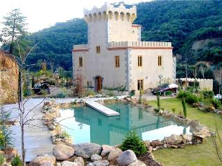 Tossa de Mar Spain Vacation Rentals - Villa