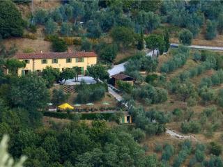 Massa e Cozzile Italy Vacation Rentals - Villa