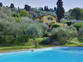 Massarosa Italy Vacation Rentals - Villa