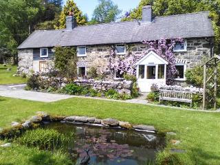 Llanuwchllyn Wales Vacation Rentals - Home