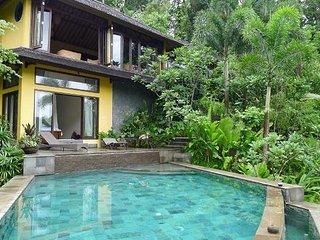Kedewatan Indonesia Vacation Rentals - Villa
