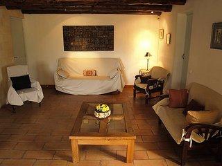 Joucas France Vacation Rentals - Villa