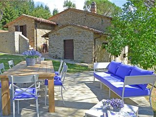 Castiglion fiorentino Italy Vacation Rentals - Villa