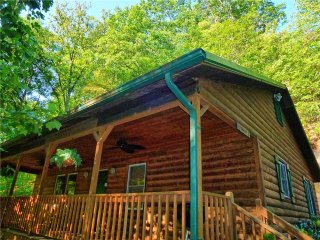 Bryson City North Carolina Vacation Rentals - Cabin