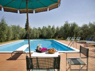 Palaia Italy Vacation Rentals - Villa