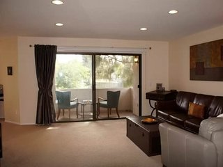 Aliso Viejo California Vacation Rentals - Apartment