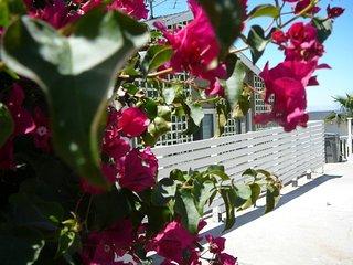 San Leandro California Vacation Rentals - Apartment