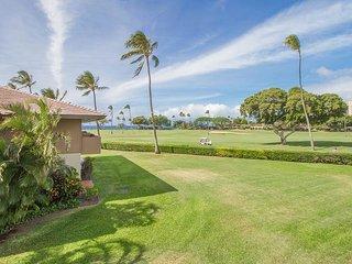 Ka'anapali Hawaii Vacation Rentals - Studio