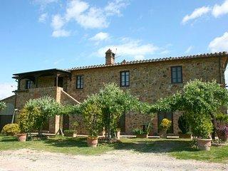 Torrita di Siena Italy Vacation Rentals - Apartment