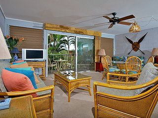 Lahaina Hawaii Vacation Rentals - Apartment