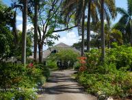 Lime Tree - Ocho Rios 5 Bedrooms waterfront