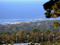 Ocean Pines #34