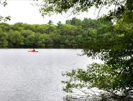 DOG FRIENDLY POND FRONT~ BEACH PASS INCLUDED! 114502