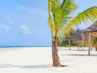 Kono Kono Beach Resort - Family Villa