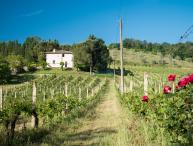 Villa on Large Estate Near San Gimignano - Villa Dora