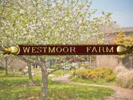 Westmoor Farm Estate