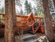 933-Cabin Idle Ours