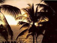 Snorkel, Swim and Enjoy Paradise